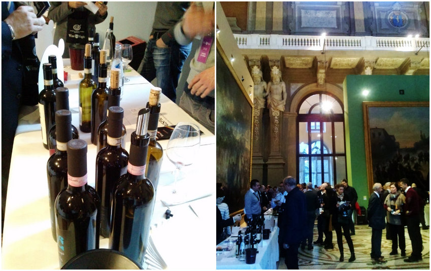Wine tasting in Palazzo Carignano with AIS, Turin