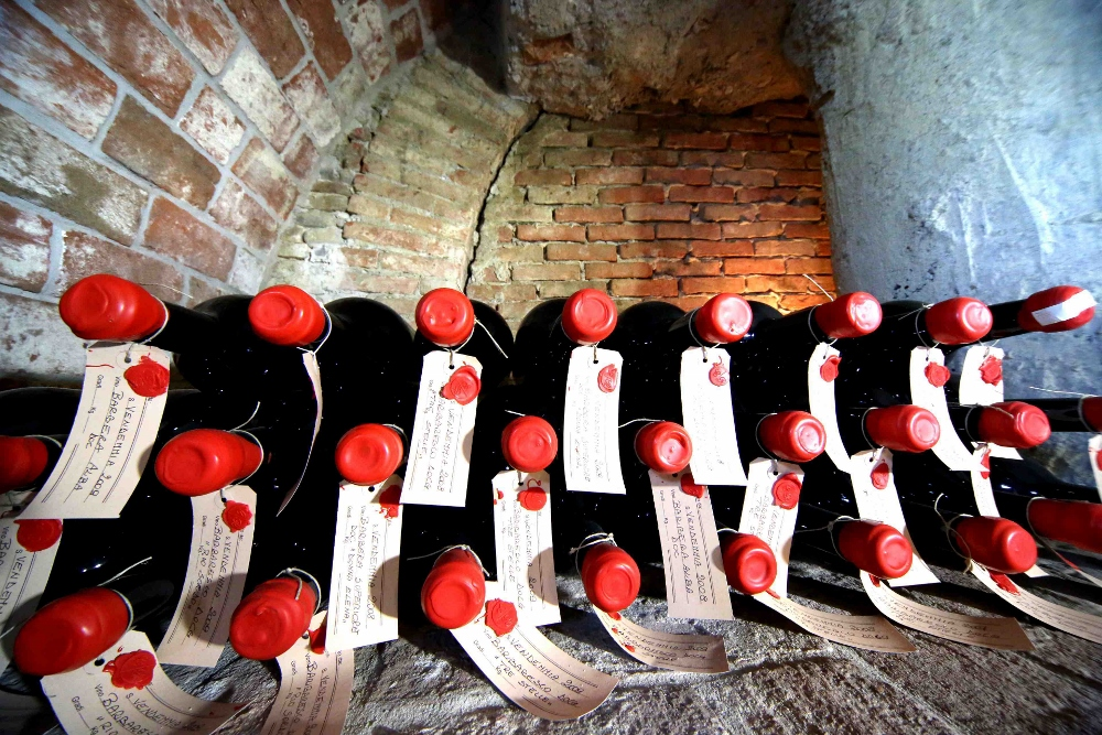 Magnums of Barbera d'Alba in the cellar of Cascina delle Rose, waiting for the right moment to be enjoyed.