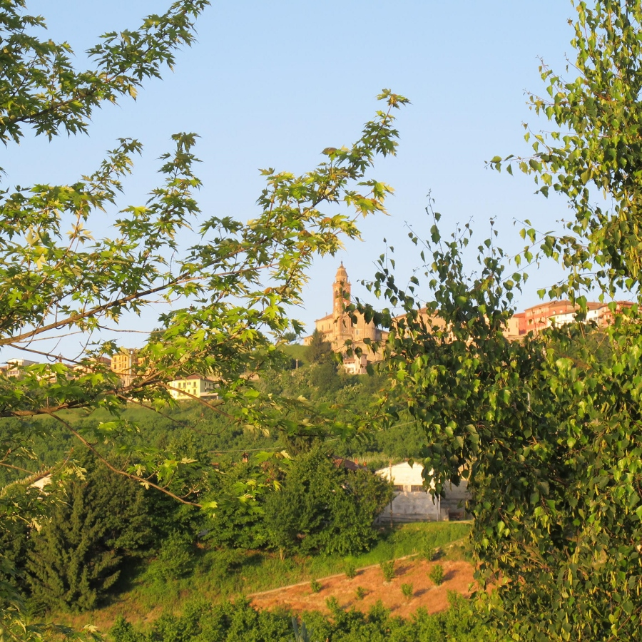 View of Diano d'Alba from Agriturismo Arcobaleno provides wonderful creative inspiration for writers.