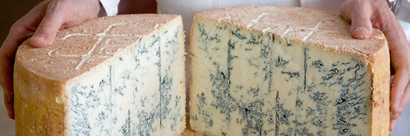 Gorgonzola piccante. Photo from www.gorgonzola.com