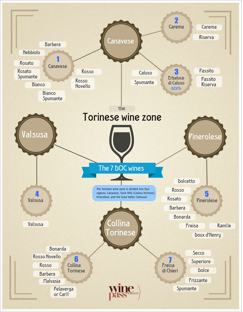 Torinese Wine Zone Infographic