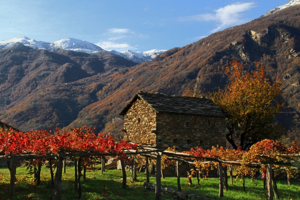 Carema in the Autumn. Photo by Maria Grazia Schiapparelli, All Rights Reserved.