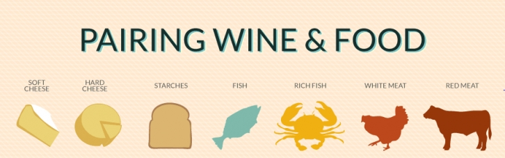 Pairing Wine & Food - Infographic