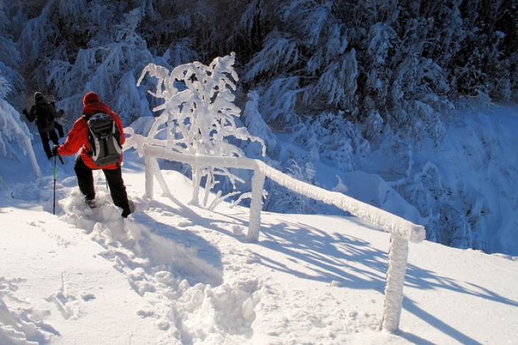 Snowshoeing. Photo from  Roberto Nencini - Nencio, Creative Commons