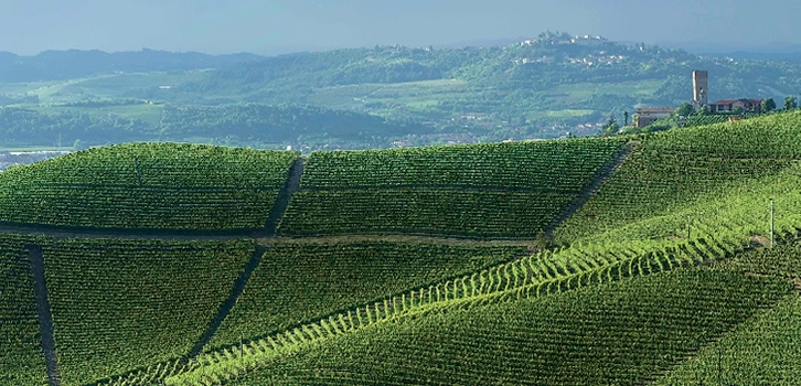 Langhe, Roero, and Monferrato on the Olympus of UNESCO