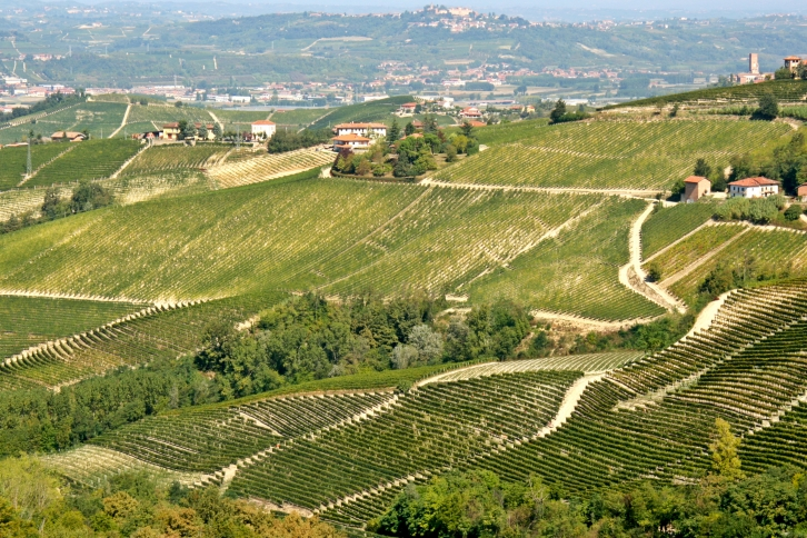 Pertinace, Barbaresco