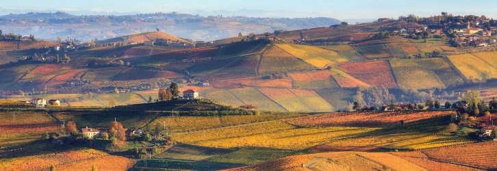 Autumn in Piemonte. Photo from www.findyouritaly.com