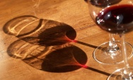 WildWine at Vinitaly 2014: The Value in Using Native Yeasts