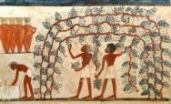 DiVino Art Show: the Ancient Lands of Egypt and Monferrato - May 9-November 1, Casale Monferrato (AL)