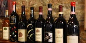 The 5 Best Wine Bars in Barbaresco