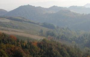 Le cantine del Monferrato