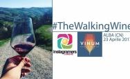 #THEWALKINGWINE: Passeggiata alla scoperta della città e dei suoi migliori vini