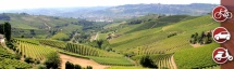 In the heart of Barbaresco