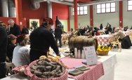 Festival of the Winter Sagre - February 28-March 23, Asti (AT)