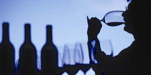 Vista, olfatto, gusto: l'analisi sensoriale del vino