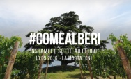 #COMEALBERI: Instameet & photo contest