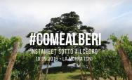 #COMEALBERI: Instameet & Challenge