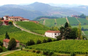 Wineries of Asti and Moscato