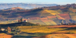 From Grapevines to Forest: 5 Hikes to Enjoy Autumn Colors in Piemonte